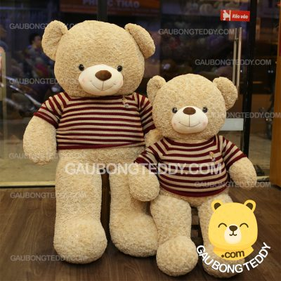 Gấu Teddy áo len kem sữa