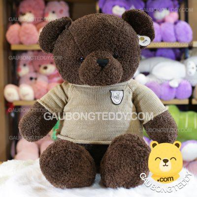 Gấu Teddy áo len lông chỉ Choco