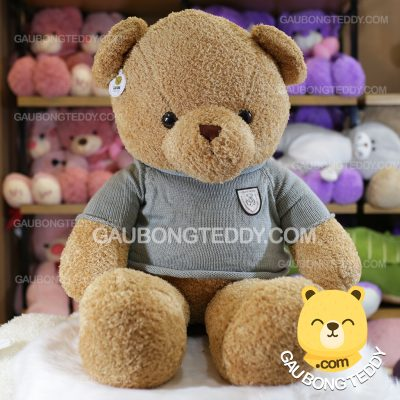 Gấu Teddy lông chỉ vàng