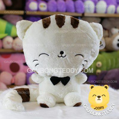 Mèo Bông Mặt Lớn - Mèo Bông Meng Meng