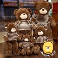 Gấu Teddy lông xoắn áo len Choco